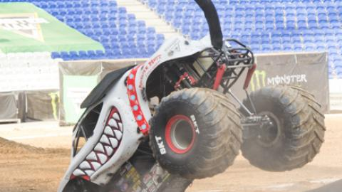 Monster Mutt Dalmatian 2 Wheel Skills - Photo by Michael Gottschalk