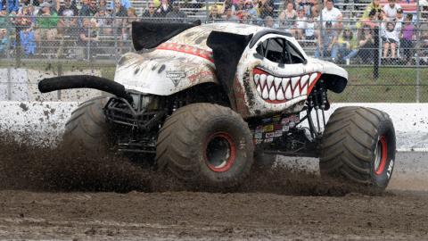 Monster Mutt Dalmatian - Photo by Dave DeAngelis
