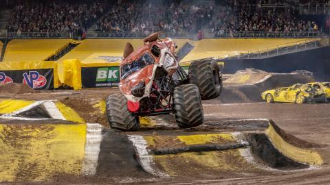 Monster Mutt. Photo by Susan Woolley.