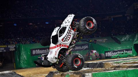 Monster Mutt Dalmatian. Photo by Kenny Lau