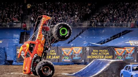 El Toro Loco. Photo by Susan Woolley