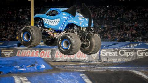 Ice Monster Mutt Dalmatian. Photo by Susan Woolley/123EventPhotography.com