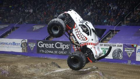 Monster Mutt Dalmatian. Photo by Kevin Berryman