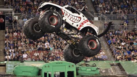Monster Mutt Dalmatian. Photo by Eric Stern