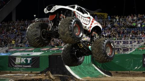 Monster Mutt Dalmatian. Photo by Eric Stern.