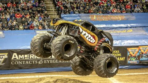 Monster Mutt Rottweiler. Photo by Jen Bay