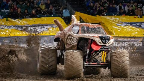 Monster Mutt. Photo by Susan Woolley