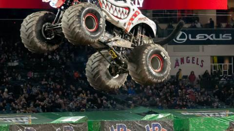 Monster Mutt Dalmatian. Photo by Susan Woolley/123 Event Photography