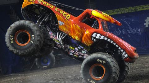 El Toro Loco. Photo by Dalton Hastings
