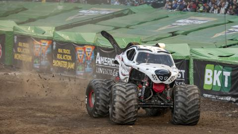 Monster Mutt Dalmatian - Photo by Susan Woolley