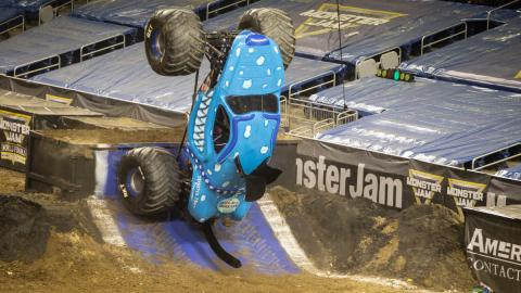 Monster Mutt Dalmatian Ice - Photo by Shawn Clanin