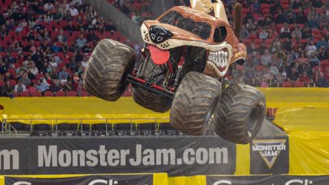 Monster Mutt - Photo by Eric Stern