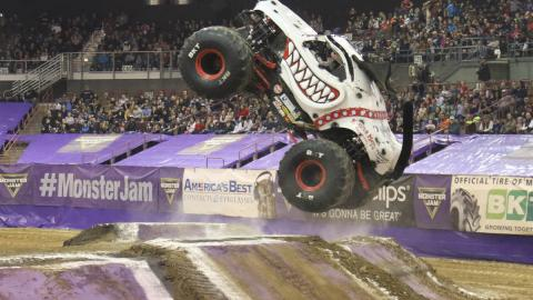Monster Mutt Dalmatian - - Photo by Kyle Riley
