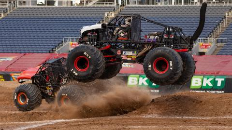 Monster Mutt Dalmatian - Photo by John Igras