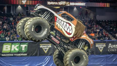Monster Mutt - Photo by Jen Bay