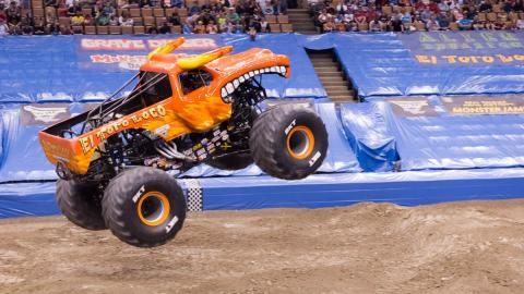 El Toro Loco - Photo by Vic Turczynski