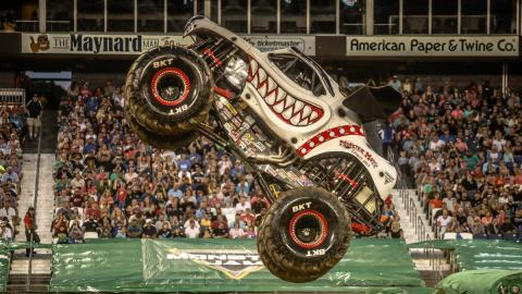 Monster Mutt Dalmatian - Photo by Jen Bay