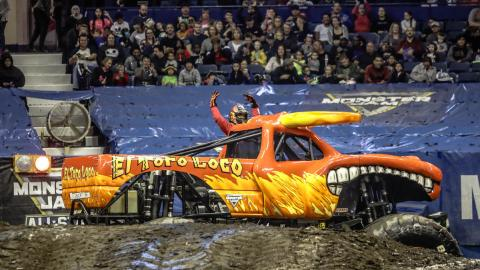 El Toro Loco - Photo by Jen Bay