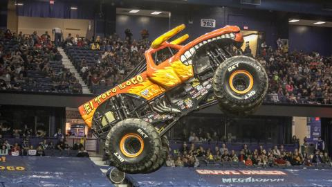 El Toro Loco - - Photo by Jen Bay