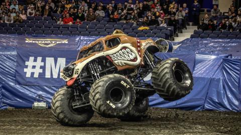 Monster Mutt- Photo by Jen Bay