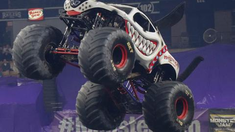 Monster Mutt Dalmatian - Photo by Dalton Hastings