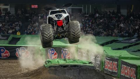 Monster Mutt Dalmatian - Photo by Susan Woolley 123EventPhotography.com