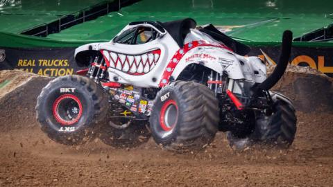 Monster Mutt Dalmatian - Photo by Susan Woolley,  123eventphotography.com