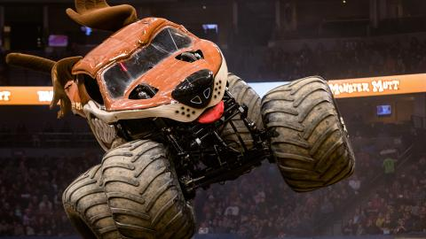Monster Mutt -  Photo by Brett Moist