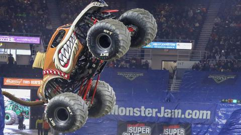 Monster Mutt - Photo by Dalton Hastings