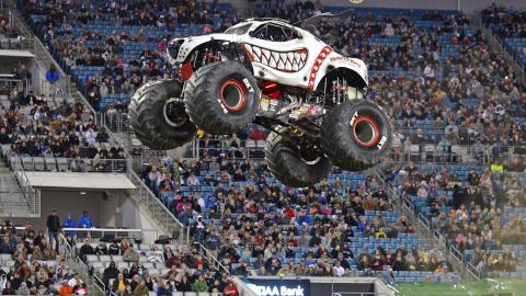Monster Mutt Dalmatian (Photo by Dave DeAngelis)